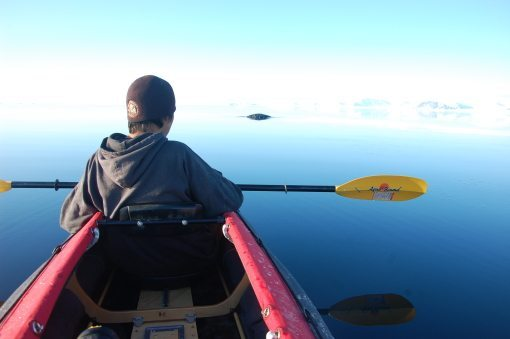 Kayaking in the early morning with the Narwhal