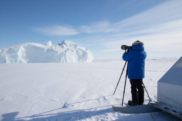 Arctic Kingdom Qik Polar bear iceberg wildlife photography