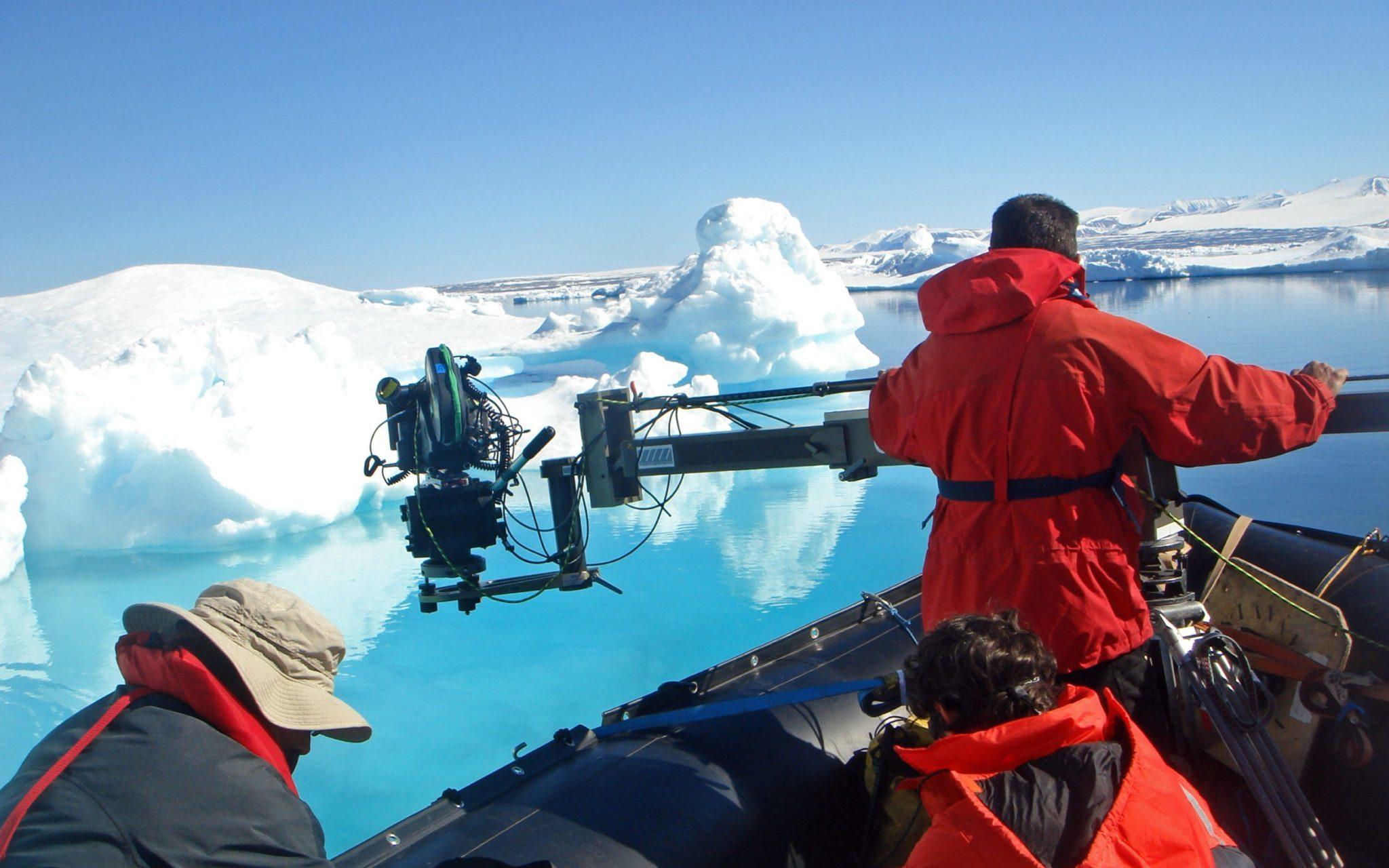 Image result for film arctic kingdom