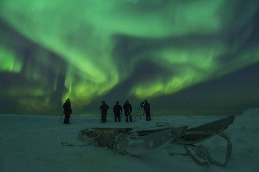 northern lights arctic kingdom polar bear migration fly-in