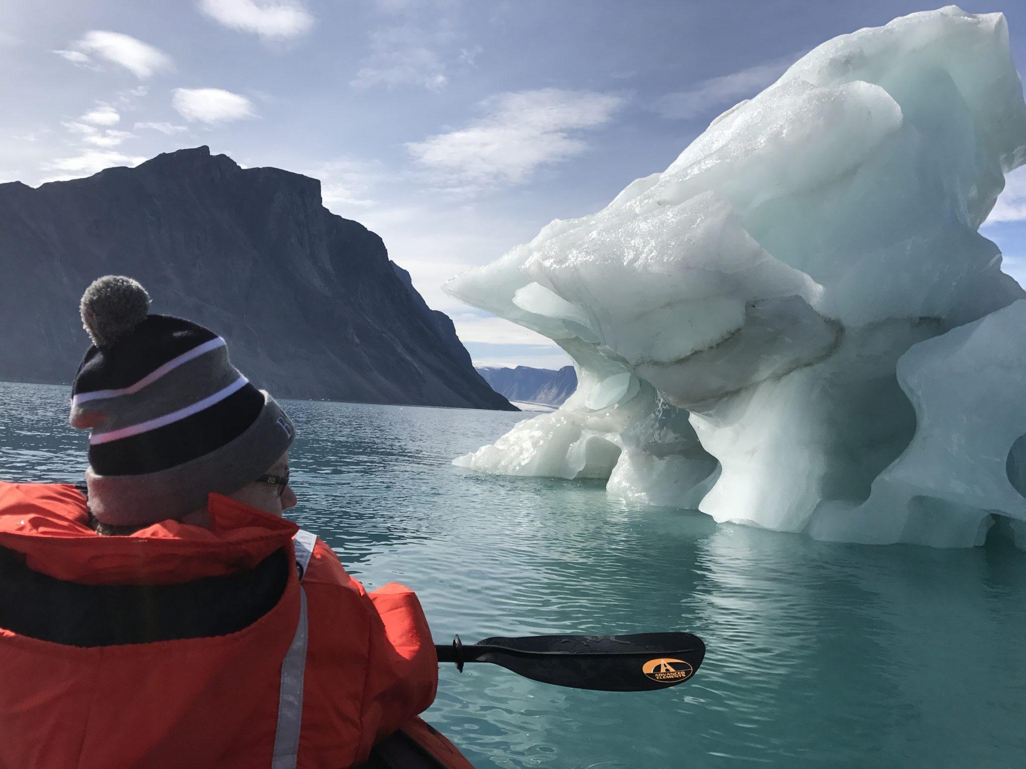 Arctic vs. Antarctica: Picking a Polar Destination | Arctic Kingdom