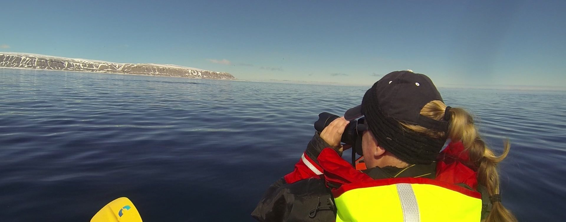 Kayaking in the Arctic With Narwhal   Arctic Kingdom
