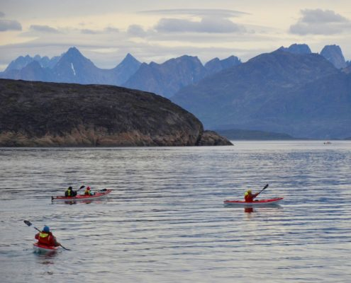 Arctic Safaris Are More Accessible Than You'd Imagine