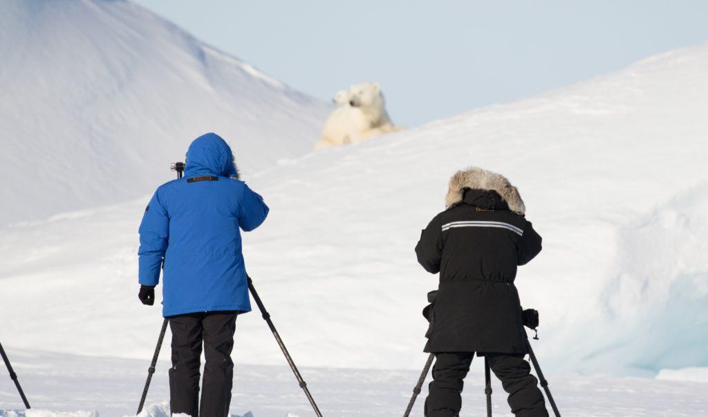 5 Unique Photography Angles on an Arctic Safari