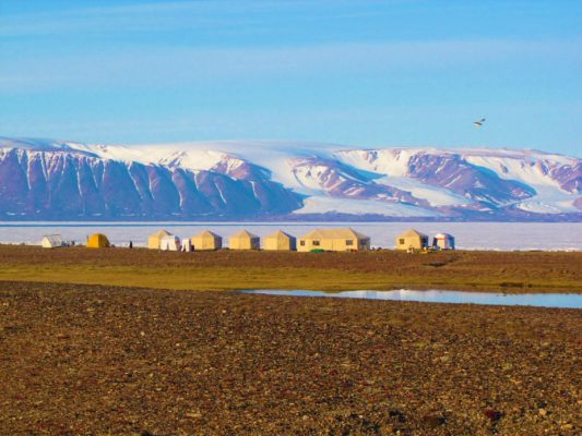 Arctic Safari camp. Yurts. Beach. Snowy Mountains.