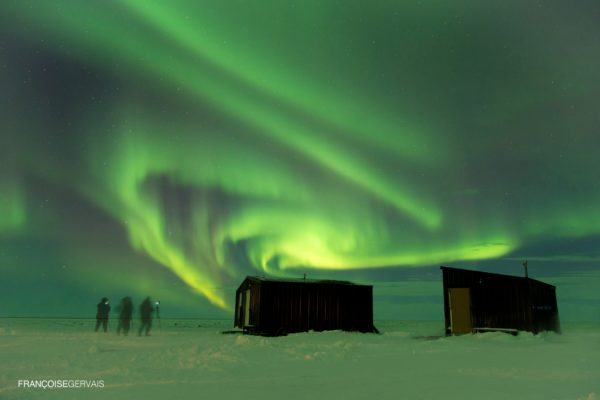 Northern lights during polar bear migration fly-in