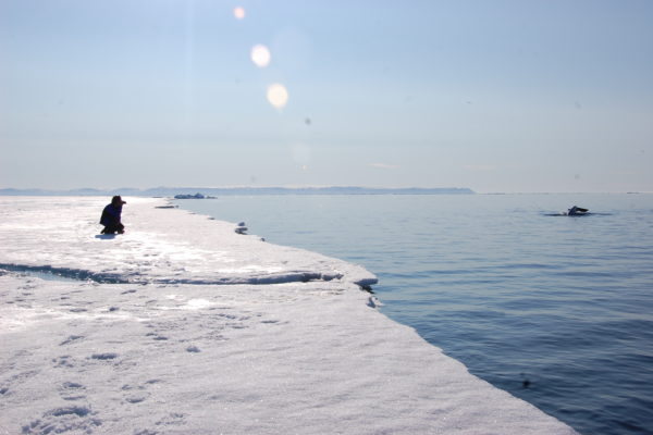 Photographer at floe edge taking picture of a whale