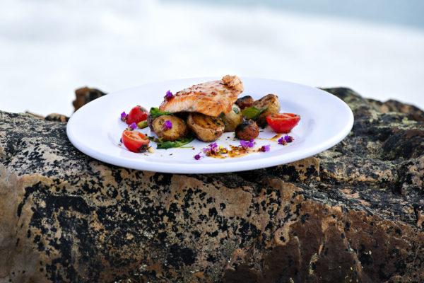 gourmet food during arctic trip