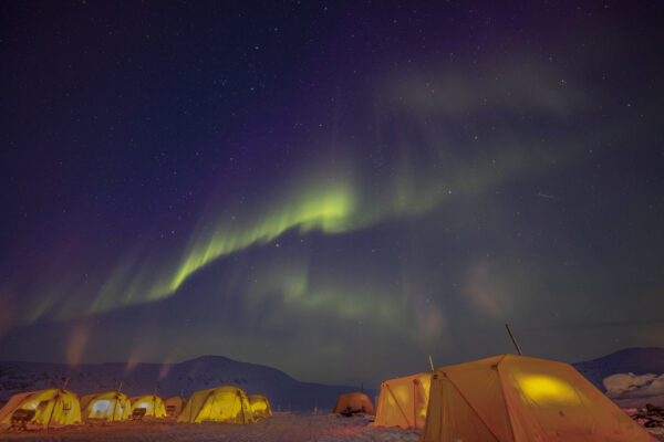 northern lights above tents during arctic safari