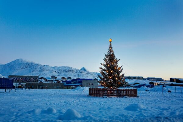 Christmas tree in the arctic