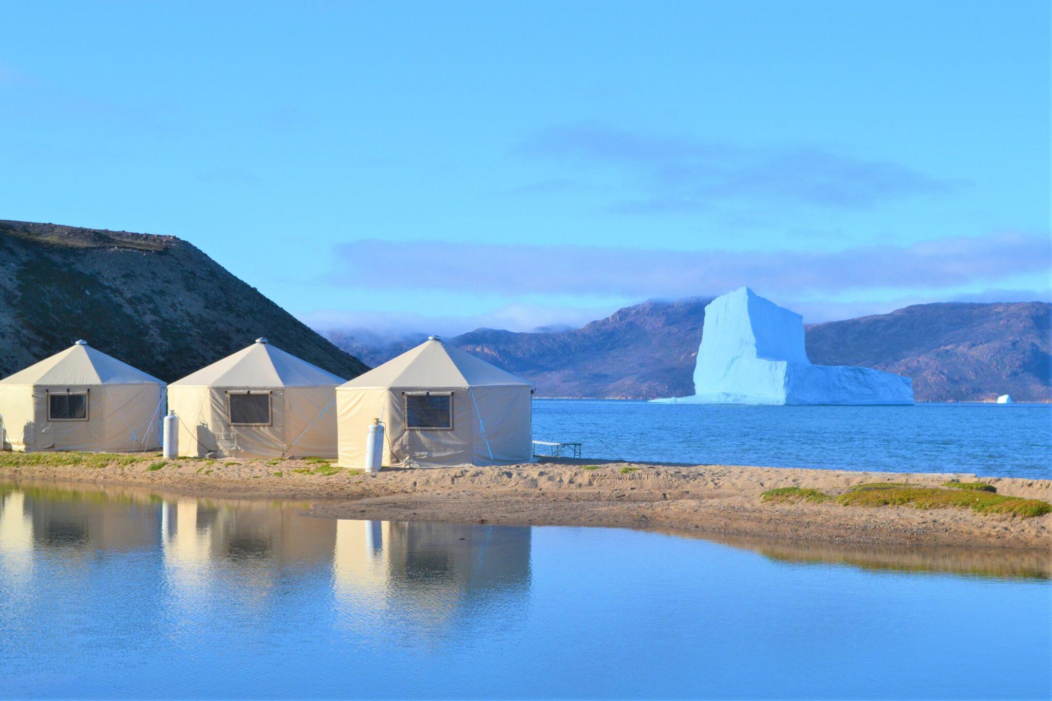 Arctic Safaris